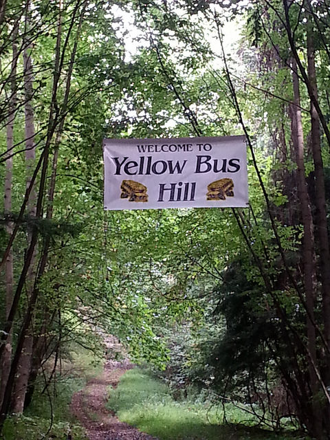 Welcome to Yellow Bus!