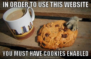 cookies-enabled.meme.stevepiper.net