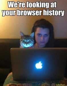 funny-cat-lolcat-browser-history