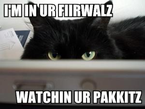 im-in-ur-fiirwalz-watchin-ur-pakkitz