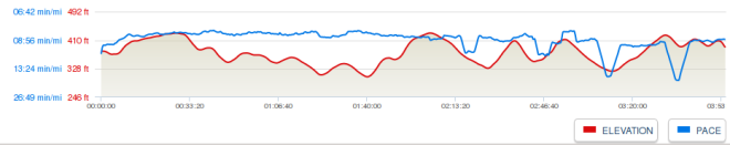 The elevation profile - pretty flat