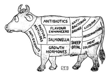 What is actually in your meat