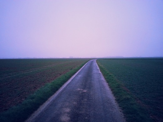 Road in Normandy in the Morning